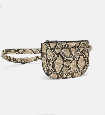 zara-belt-pouch-from-one-size-snake-skin-cross-body-bag-3-0-960-960.jpg.f0deed5892be5543bb90af9a557286b7.jpg